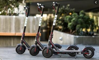 Attention Millennials: New Study Reveals E-Scooters Aren't